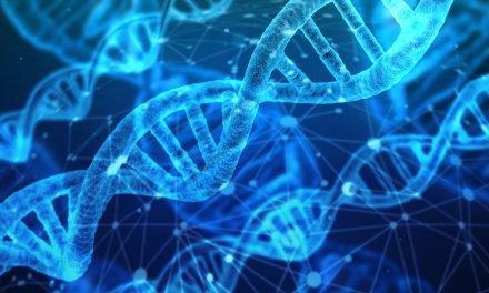 Obesitas genetisch? Het verband tussen obesitas, de hersenen en genetica