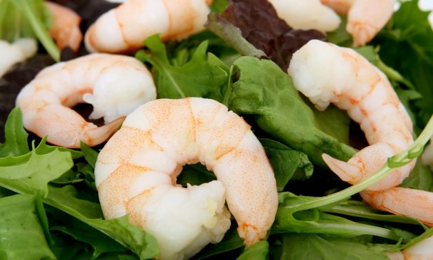 Salade met garnalen en citroen dressing